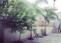 image nof-ilay-yard-pool-03-jpg