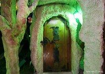 image shade-trees-cave2-08-jpg