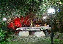 image shade-trees-garden-04-jpg