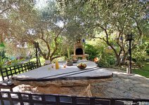 image shade-trees-garden-05-jpg