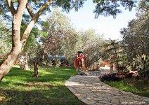 image shade-trees-garden-13-jpg